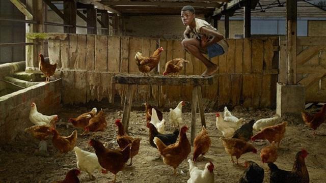 'Cậu bé gà': Chàng trai bị nhốt trong chuồng gà đến nỗi quên cách sống như con người và 22 năm bị cầm tù trên giường như động vật