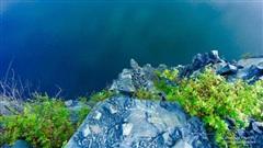 Rơi xuống vực nhưng mắc phải cành cây, người đàn ông lửng lơ giữa lưng chừng núi và hồi kết cảnh tỉnh nhiều người