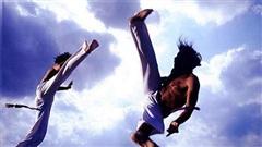 So sánh cú đá của 4 môn võ Capoeria, Karate, Muay Thái Lan và Teakwondo