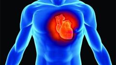 Người đàn ông với chiếc máy tính nhỏ đặt trong tim