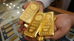 Vàng tăng dữ dội, liên tiếp vọt giá lên sát 55 triệu/lượng