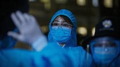 Thêm 41 ca mắc COVID-19, trong đó 40 ca liên quan đến Đà Nẵng, Việt Nam có 713 bệnh nhân