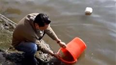 Người dân đeo kín khẩu trang thả cá phóng sinh dịp Vu Lan