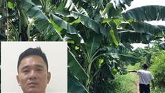 Vụ bé gái bị hiếp dâm trong vườn chuối: Hé lộ phương thức giúp cảnh sát tìm ra 'yêu râu xanh'