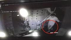 Vụ trộm 'thả rông' đột nhập nhà dân ở Hà Nội: Bàng hoàng lời kể nữ chủ nhà