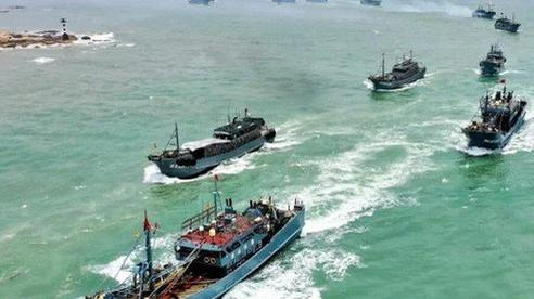 Tuần duyên Mỹ tuyên chiến với tàu cá Trung Quốc 'săn mồi'