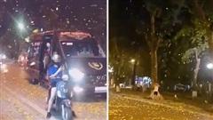 Hàng loạt clip 'mưa lá vàng' ở Hà Nội được chia sẻ rầm rộ, xem xong ai cũng muốn ra đường đứng 'canh' để chụp ảnh