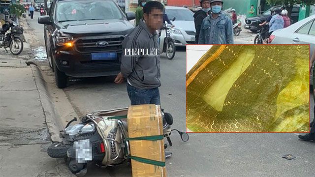 TP HCM: Người đàn ông chở con rắn hổ mang chúa 20 kg bon bon trên đường