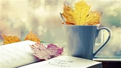 Ca khúc ngày mới: Thu ru phố những bình yên giản dị