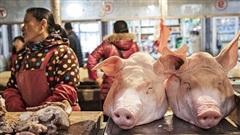 Dự báo kho dự trữ thịt lợn bí mật của Trung Quốc sắp cạn kiệt, chỉ còn 'trụ' được 3 tháng