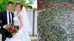 Con dâu mang bầu đến tháng thứ 8 nhưng bị 'đặt nhờ' mấy nong tằm trong phòng ngủ, câu nói của bố chồng khiến MXH ai cũng phẫn nộ