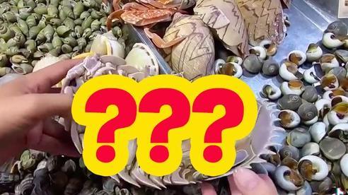 Loại hải sản được cho là ngon hơn cả tôm hùm ở Việt Nam, vì hiếm có khó tìm nên được rao bán với giá 'đắt xắt ra miếng'?