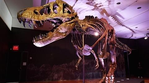 Hoá thạch khủng long đắt nhất vừa bán hơn 740 tỷ