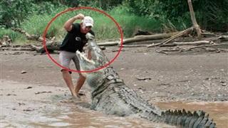 Cái giá phải trả khi bất chấp lệnh cấm bơi trong hồ có cá sấu