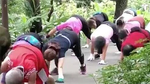 Bài tập thể dục theo trường phái… rùa bò
