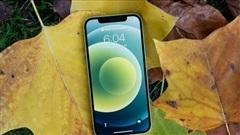 Apple chưa ưu tiên bán iPhone 12 và iPhone 12 Pro tại Việt Nam