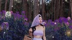 'Chụp một lần, sống ảo cả năm': đây là những khu rừng lên ảnh đẹp như phim mà bạn nhất định phải đến