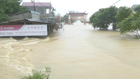 TS Mai Văn Khiêm: Bão số 9 cường độ rất mạnh, có thể gây mưa đặc biệt to tới 500mm/đợt