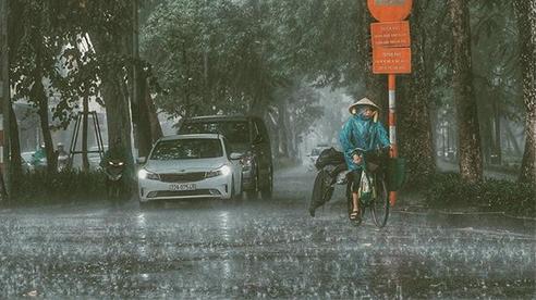 Bản tin Dự báo thời tiết ngày 26/10 : Bão số 8 suy yếu thành áp thấp; Bão số 9 tiến vào Biển Đông