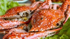 3 nhóm người ăn cua ghẹ có thể gây nguy hiểm cho sức khỏe