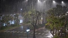 Bão số 9 đang áp sát đất liền: Đà Nẵng, Quảng Ngãi bắt đầu có mưa lớn và gió giật mạnh, 26 thuyền viên vẫn đang mất tích