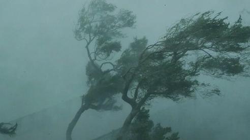 Báo nước ngoài viết về bão lũ miền Trung: 'Bão sát thủ' vừa qua, Việt Nam lại sẵn sàng sơ tán 1,3 triệu dân