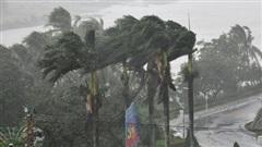 Báo quốc tế nói về bão số 9 Molave tại Việt Nam: Cơn bão cuồng loạn mạnh nhất thập kỷ đánh vào một quốc gia kiên cường