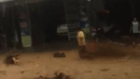 Khoảnh khắc cứu kịp người bị trôi giữa dòng lũ cuồn cuộn ở Quảng Nam