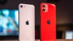 Đặt lên bàn cân: iPhone 12 hay iPhone SE 2 chụp ảnh đẹp hơn?