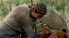 Đạo diễn 'Cậu Vàng' xin lỗi vì quản trị trang phim xúc phạm fan gây phẫn nộ
