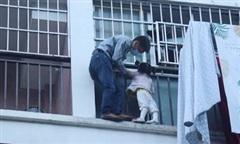 Người hùng cứu bé gái 3 tuổi ngoài ban công tầng 5 chung cư