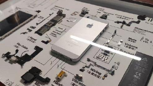 Rộ trào lưu 'mổ xẻ' iPhone cũ làm tiêu bản ở Trung Quốc