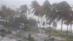 Tin bão khẩn cấp: Bão số 12 cường độ mạnh đi vào đất liền sáng sớm 10/11, gây mưa lớn nhiều ngày ở miền Trung