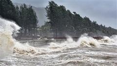 Bản tin Dự báo thời tiết ngày 12/11:Bão Vamco tăng cấp, miền Trung tiếp tục mưa lớn