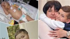 Con trai 2 tuổi bị ung thư máu hiếm gặp, khi bác sĩ nói 'hết cách chữa' người mẹ chấp nhận cứu con bằng phương pháp điều trị ung thư chưa từng được áp dụng cho trẻ em