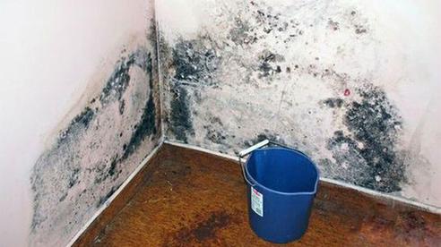 Chàng trai 23 tuổi không uống rượu, không hút thuốc nhưng phổi như 'lưới đánh cá', bác sĩ cảnh báo thủ phạm nằm trên tường