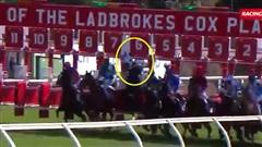 Ngựa tự dưng 'dở chứng', tay đua gãy xương cổ nhưng vẫn có ứng xử bất ngờ sau sự cố