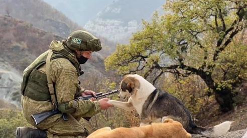 'Hồi chuông tử thần' đầu tiên của Thổ ở Karabakh: 5 năm tới sẽ là địa ngục cho quân Nga?