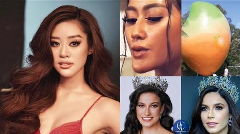 Đối thủ Khánh Vân bị nghi kéo cằm, gọt xương quai hàm, nhuộm da để chinh chiến Miss Universe 2020