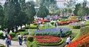 'Thành phố ngàn hoa' tấp nập du khách ngày đầu năm mới 2021
