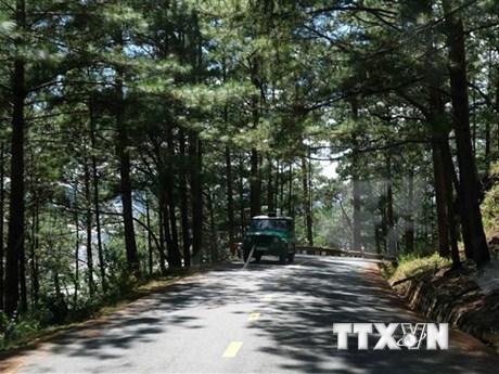Lâm Đồng: Xử lý vụ phá hoại phương tiện do du lịch tự phát tại rừng