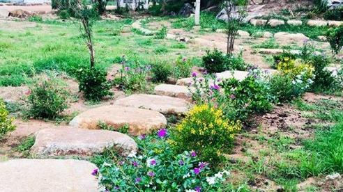 Vượt 400km đến thăm chồng, vợ sững sờ thấy cảnh trong vườn