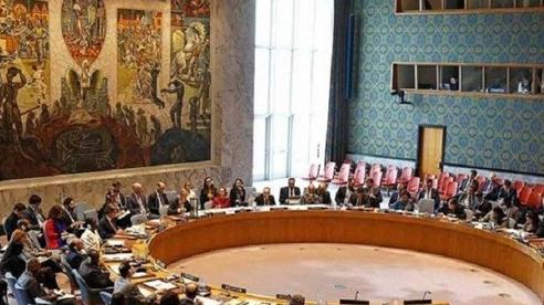 Ấn Độ, Mexico, Na Uy, Ireland và Kenya chính thức tham gia Hội đồng Bảo an LHQ