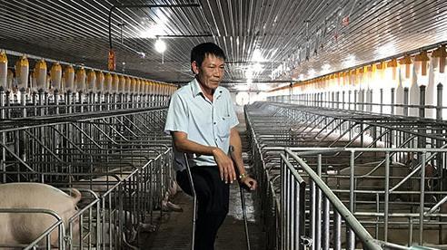 Cú chốt ngày cuối năm, lão nông thương binh thu ngay 20 tỷ đồng