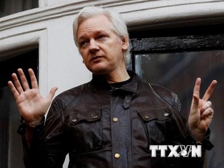 Nhà sáng lập Wikileaks sẽ được về nước nếu yêu cầu dẫn độ bị bác