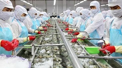 Việt Nam đặt mục tiêu dẫn đầu thế giới về sản xuất và xuất khẩu thủy sản