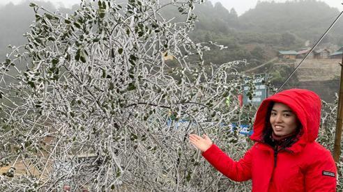 Băng giá bao phủ đỉnh Tà Xùa, du khách nô nức kéo đến chụp ảnh