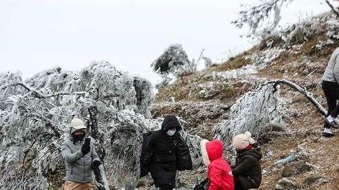 Dự báo thời tiết mới nhất hôm nay 12/1: Hà Nội rét 8 độ C