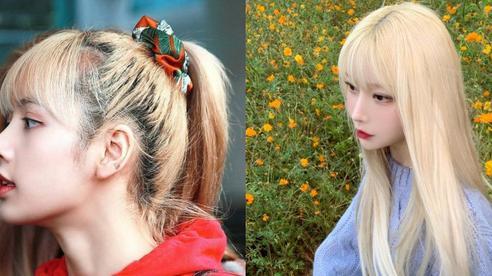 Lisa hói đầu, trai đẹp rụng tóc lả tả vì tẩy tóc: Bạn cần ghim ngay những tip này nếu đang định 'đảo ngói' cuối năm