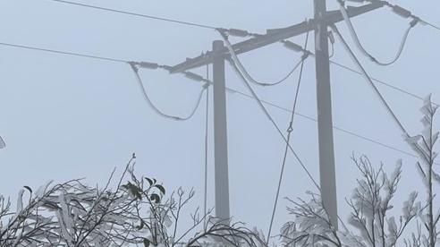 PC Sơn La khôi phục điện cho 100% khách hàng bị ảnh hưởng do băng tuyết